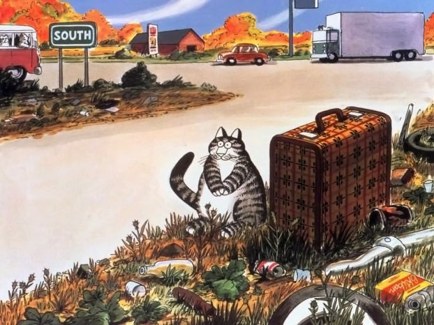 Картинки по запросу коты с чемоданом