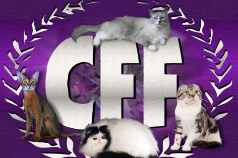 The Cat Fanciers Federation (CFF)